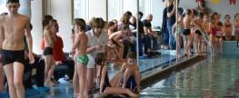 Foto's schoolzwemtoernooi 2013 online